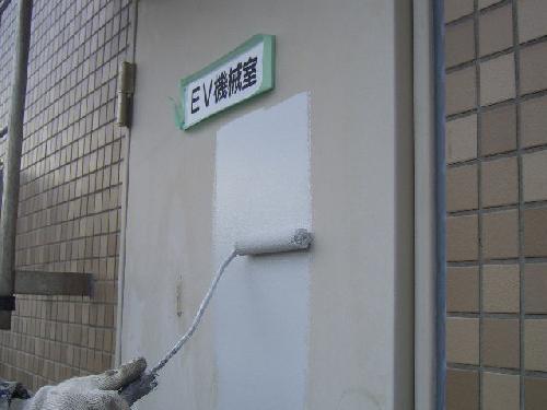 ドアのみの塗装--ドアのみの塗装受け付けております!